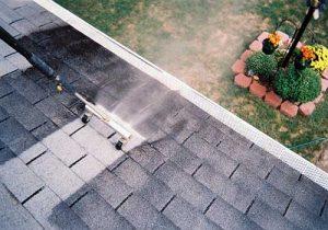 maple ridge asphalt roof cleaning