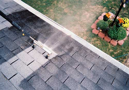 maple ridge asphalt roof cleaning