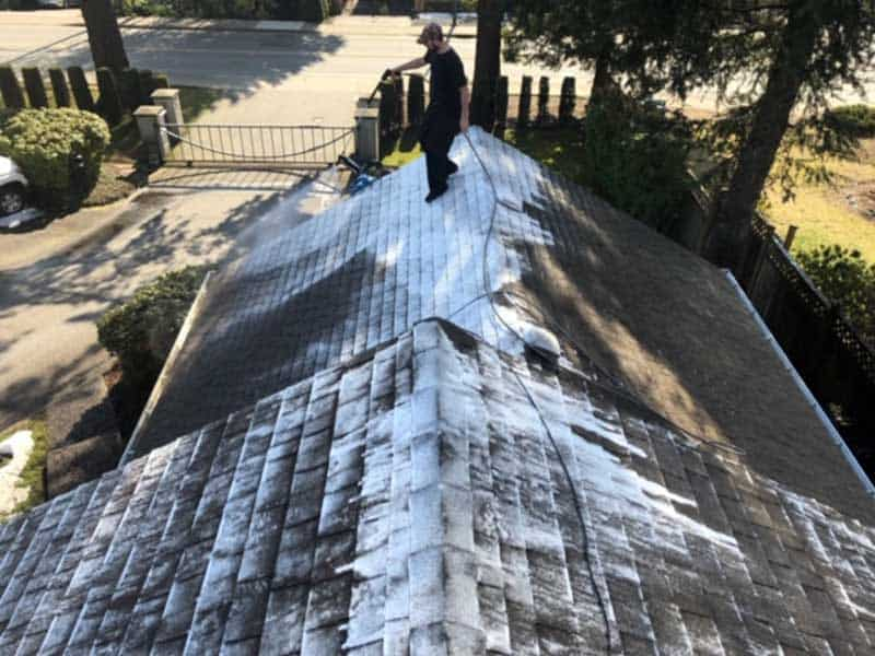 roof demossing Vancouver